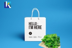 paper-bag-ijh